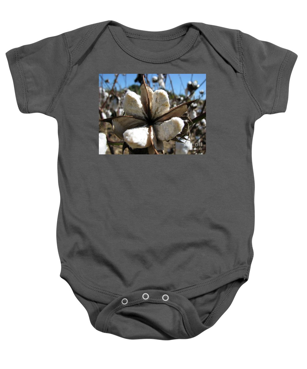 Cotton Baby Onesie featuring the photograph Cotton by Amanda Barcon