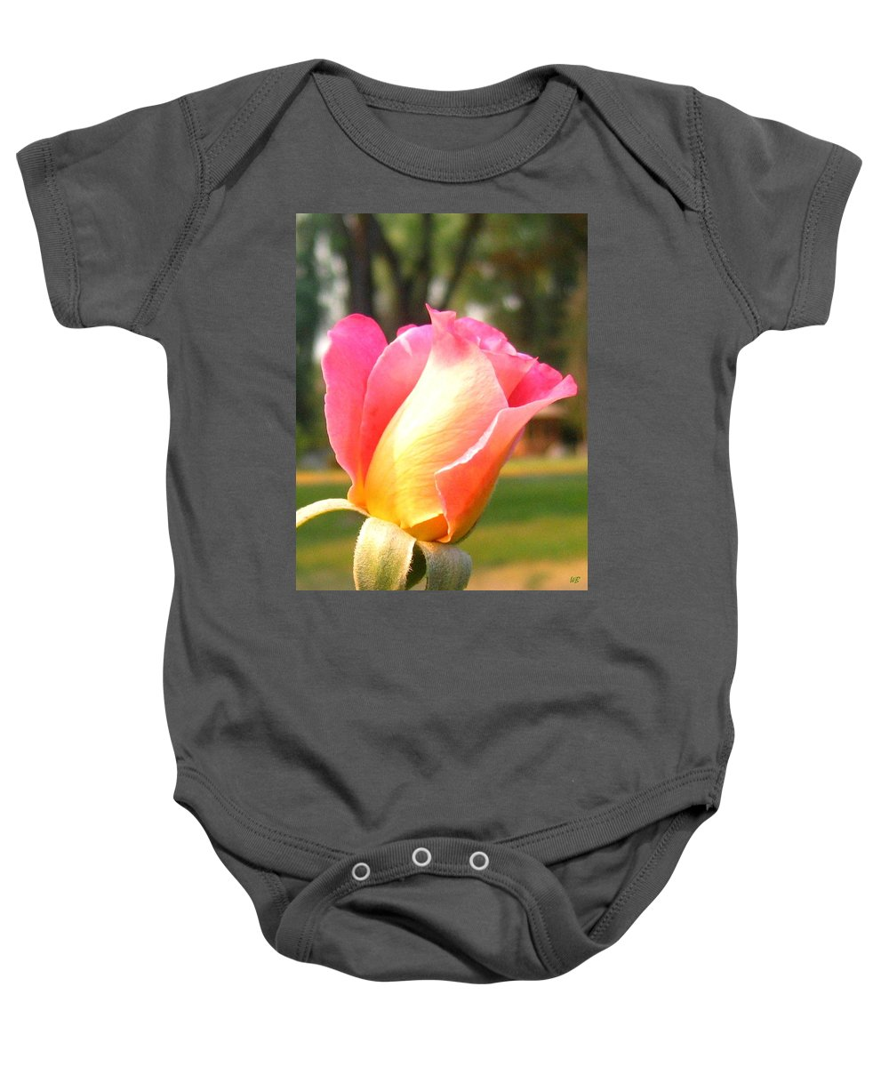 Rose Baby Onesie featuring the photograph Country Rose by Will Borden