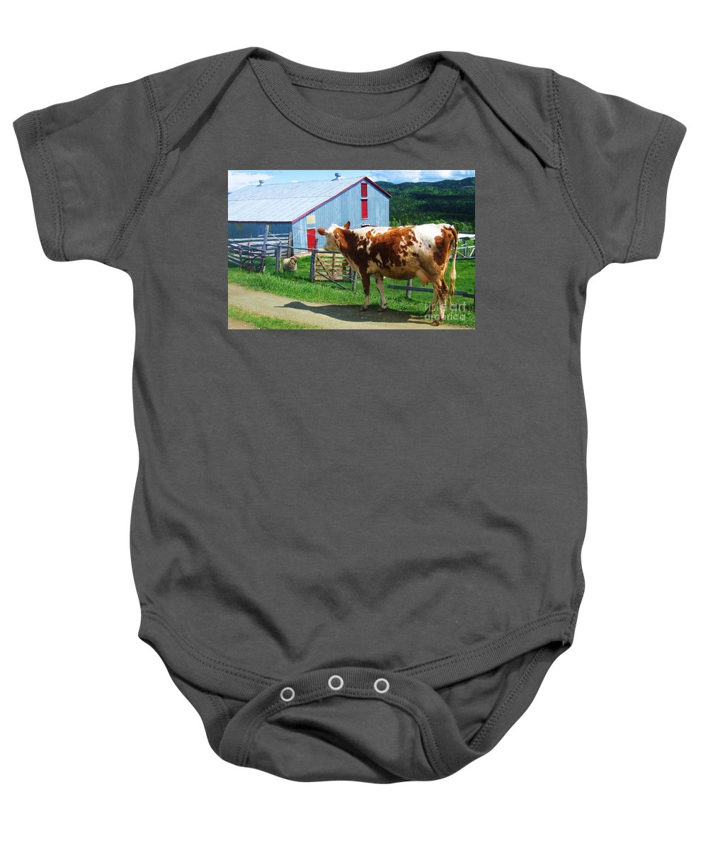 Photograph Cow Sheep Barn Field Newfoundland Baby Onesie featuring the photograph Cow Sheep And Bicycle by Seon-Jeong Kim