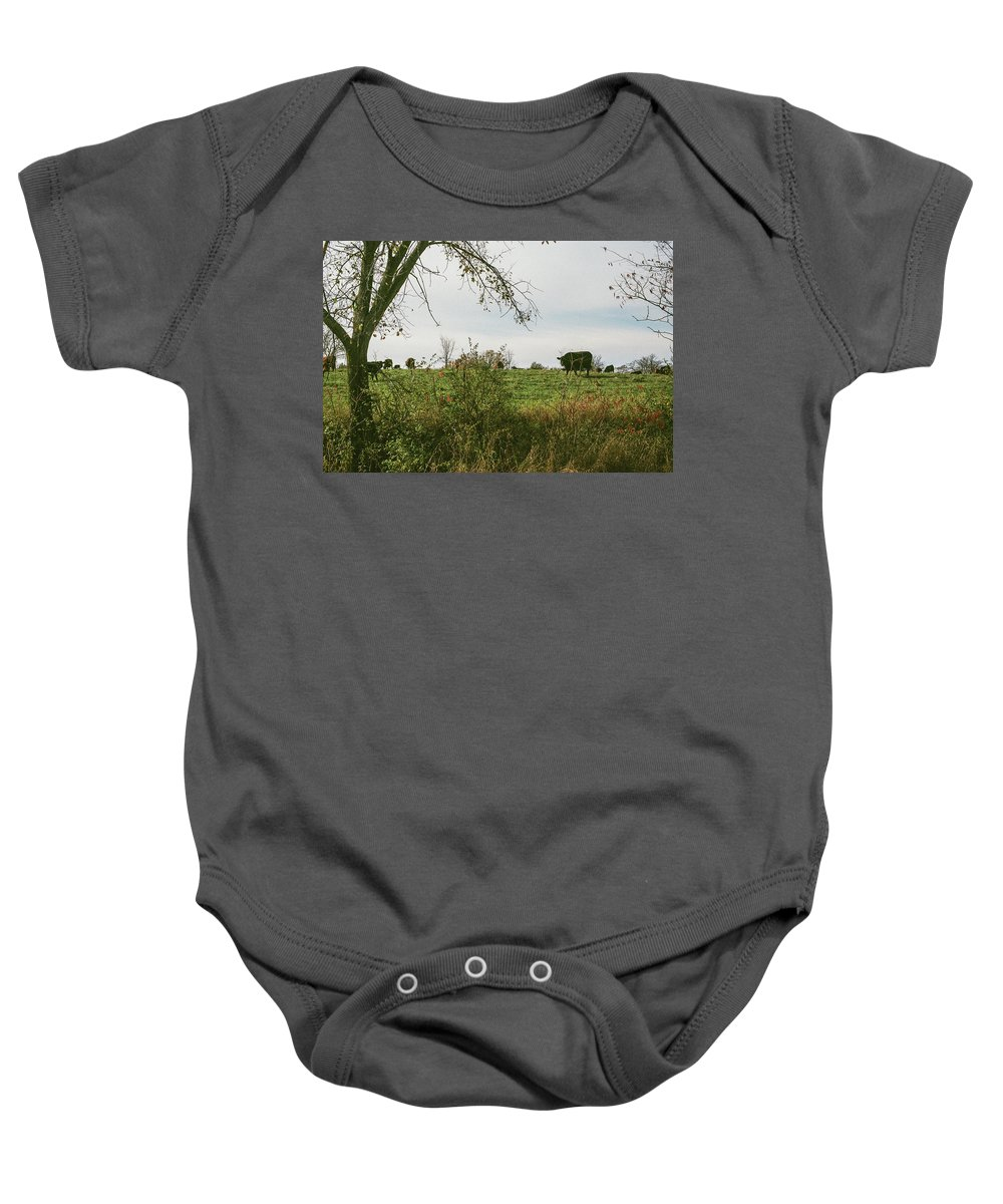 35mm Film Baby Onesie featuring the photograph Cows And Farm In Michigan by John McGraw