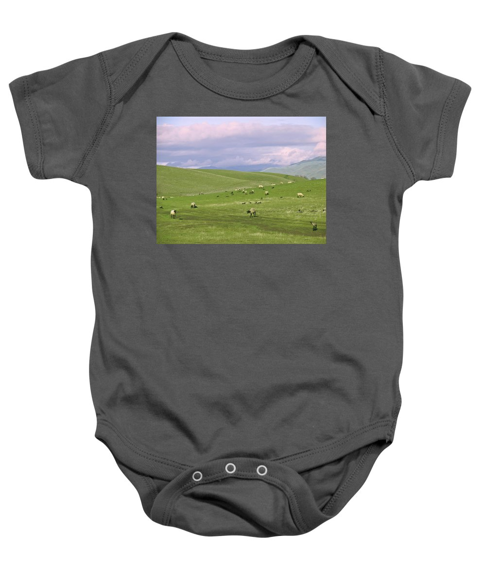 Landscape Baby Onesie featuring the photograph Cross Road Sheep by Karen W Meyer