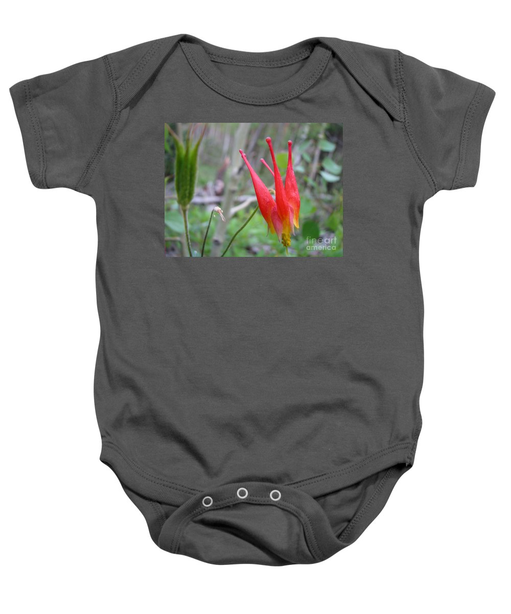 Flowers Of Colorado Baby Onesie featuring the photograph Crown by Amanda Barcon