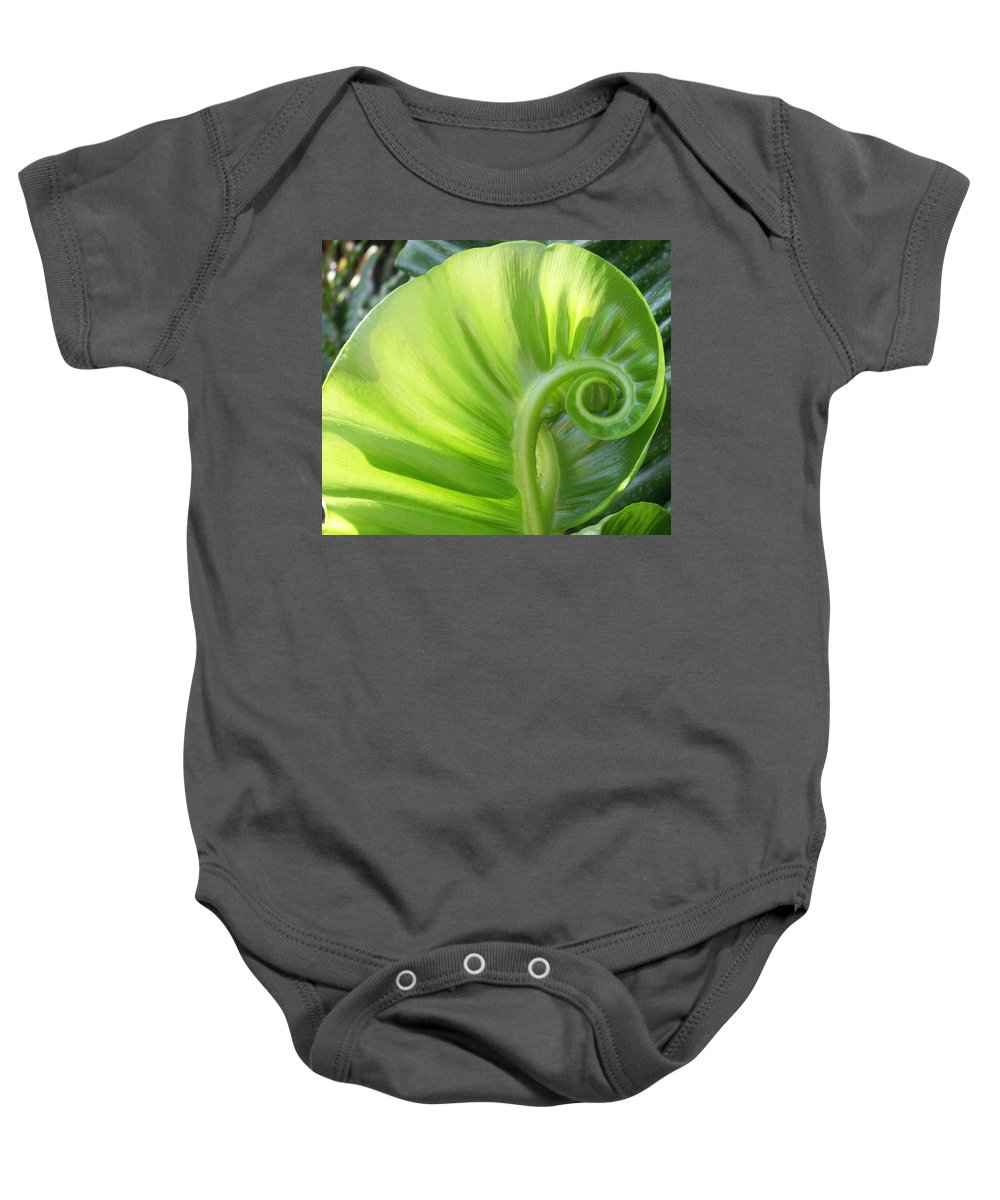 Leaf Baby Onesie featuring the photograph Curly Leaf by Amy Fose