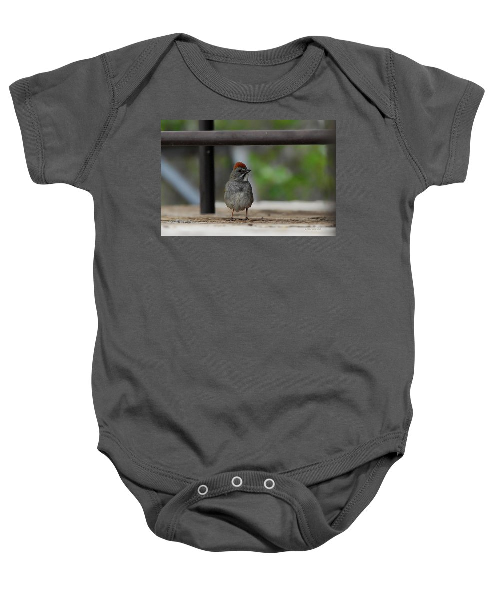 Bird Baby Onesie featuring the photograph Cute Redhead by Donna Blackhall