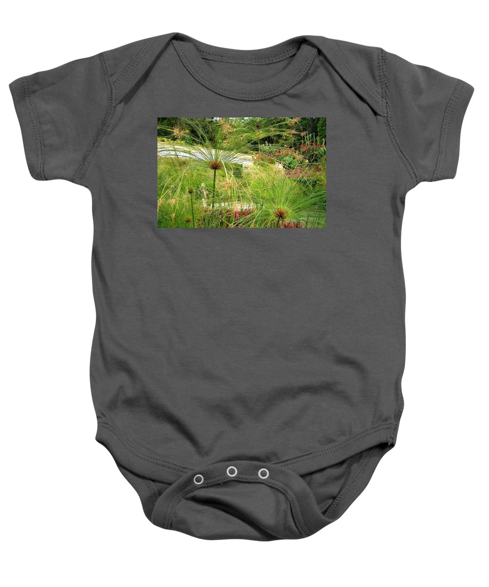 Landscape Baby Onesie featuring the photograph Cyperus Papyrus - Bulrush by Valerie Ornstein