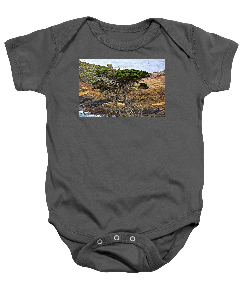 Cypress Tree In Point Lobos State Reserve Near Monterey Baby Onesie featuring the photograph Cypress Tree In Point Lobos State Reserve Near Monterey-california by Ruth Hager