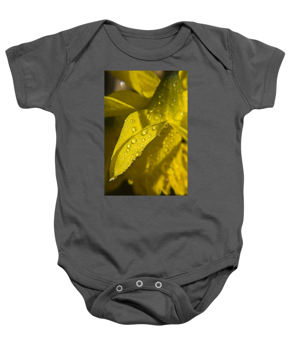 Daffodil Baby Onesie featuring the photograph Daffodil Dew by Teresa Mucha