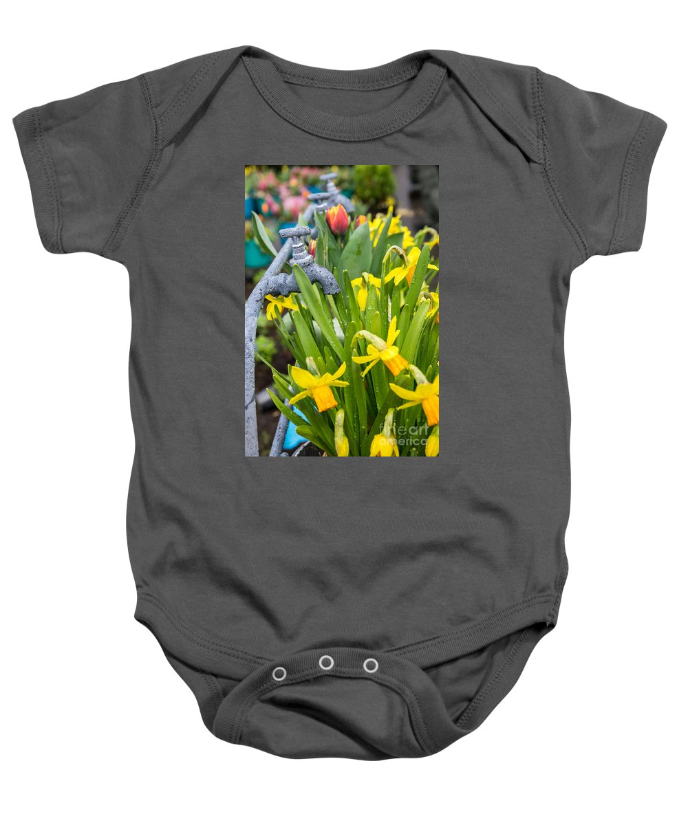 Keukenhof Garden Daffodils Daffodil Tap Taps Fresh Netherlands Keukenhof Europe European Dutch Amsterdam Watering Yellow Composition Bunch Wet Flower Flowers Gardening Gardens Travel Springtime Cultivation Growing Bloom Blooming Natural Growth Planted Plant Leaves Blossom Seasonal Season Stems Detail Beautiful Delicate Spring Flowerbed Agriculture Baby Onesie featuring the photograph Daffodils 2 by Marcin Rogozinski
