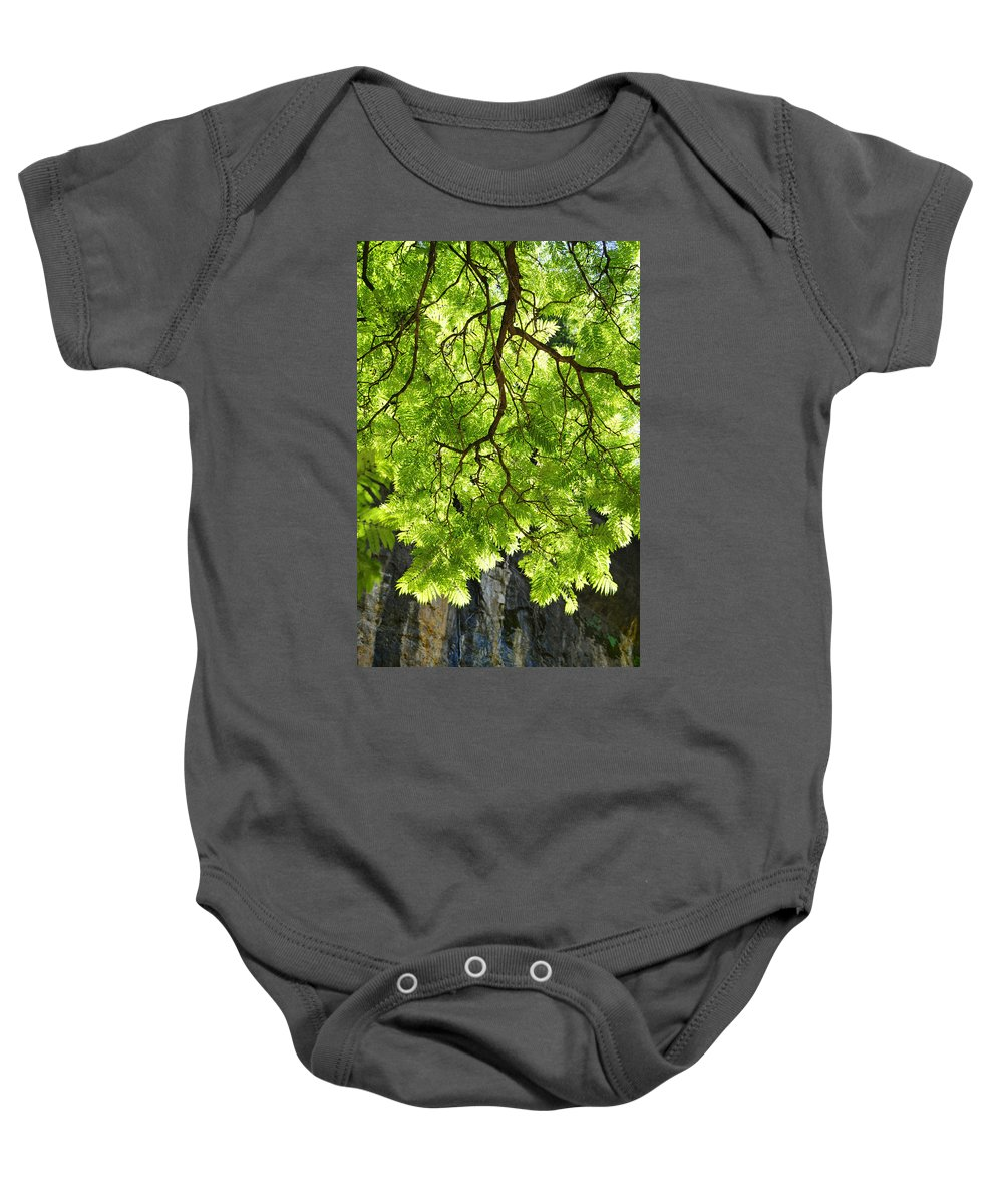 Skiphunt Baby Onesie featuring the photograph Daydream by Skip Hunt