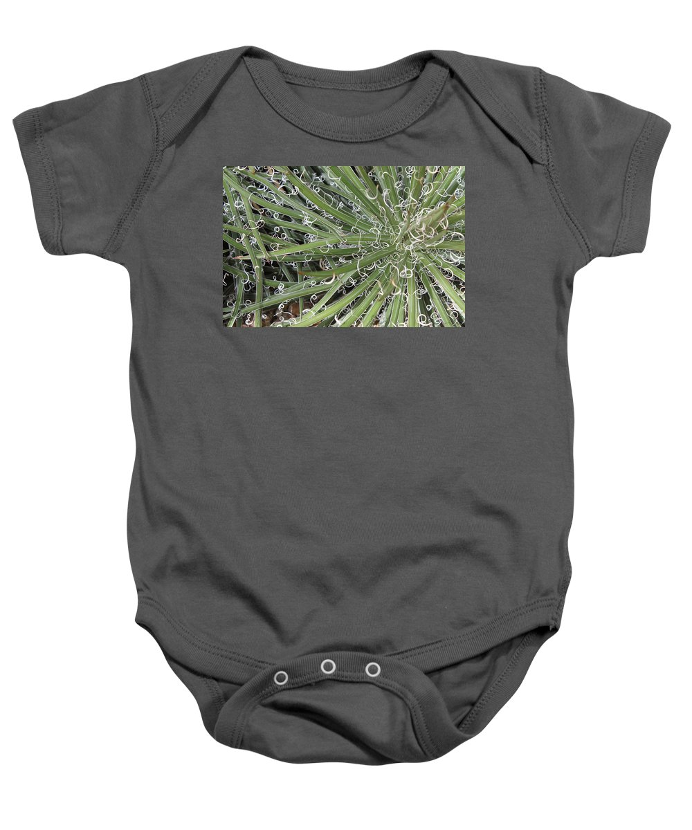 Nature Baby Onesie featuring the photograph Decorations by Munir Alawi