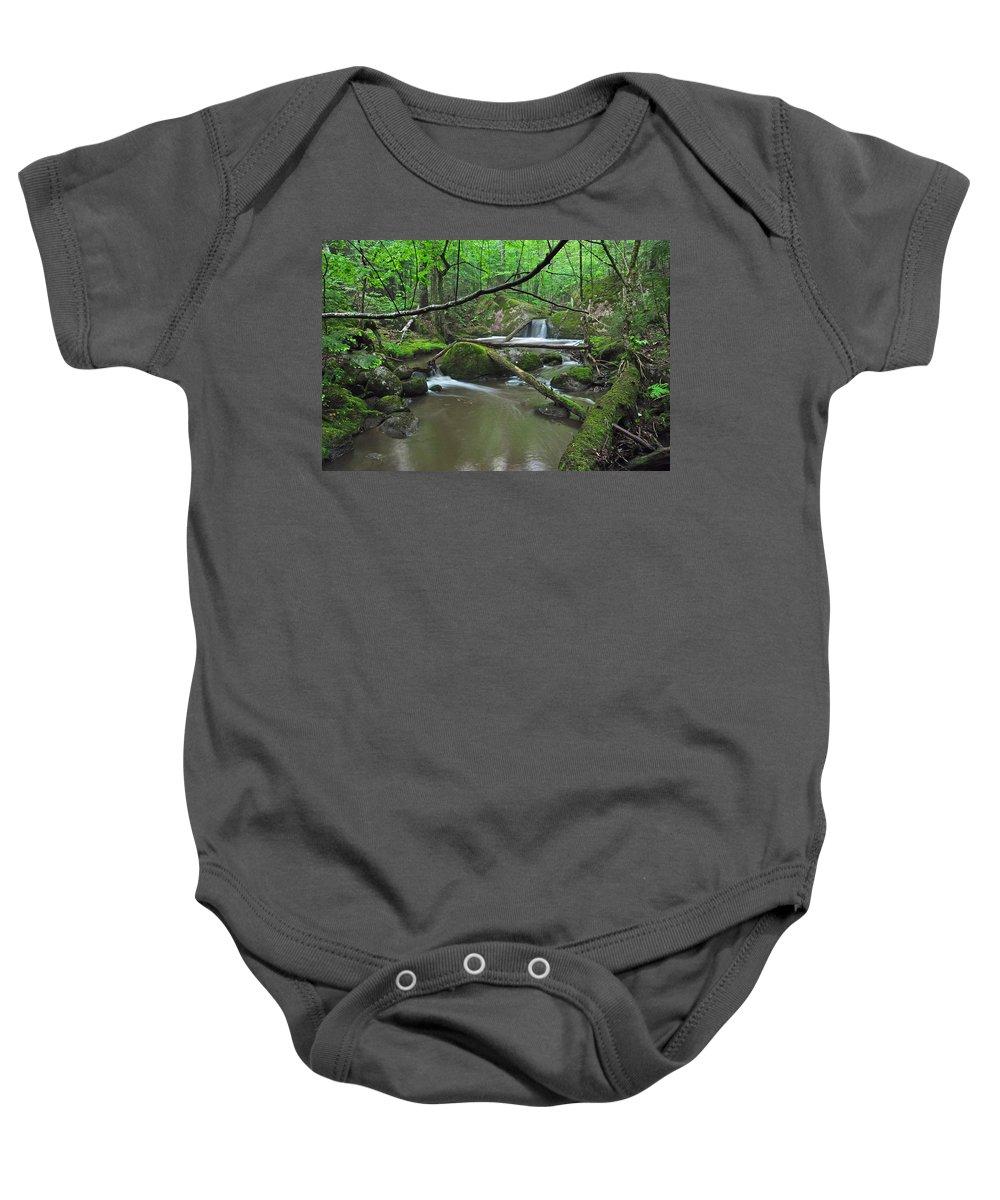 Stream Baby Onesie featuring the photograph Deep Woods Stream 2 by Glenn Gordon