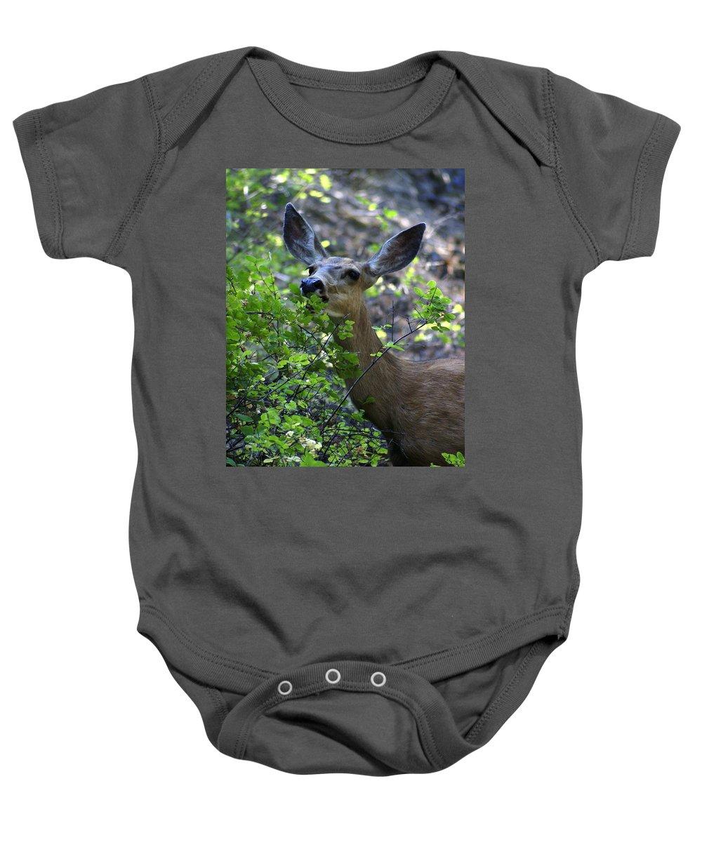 Spokane Baby Onesie featuring the photograph Deer Having Lunch by Ben Upham III