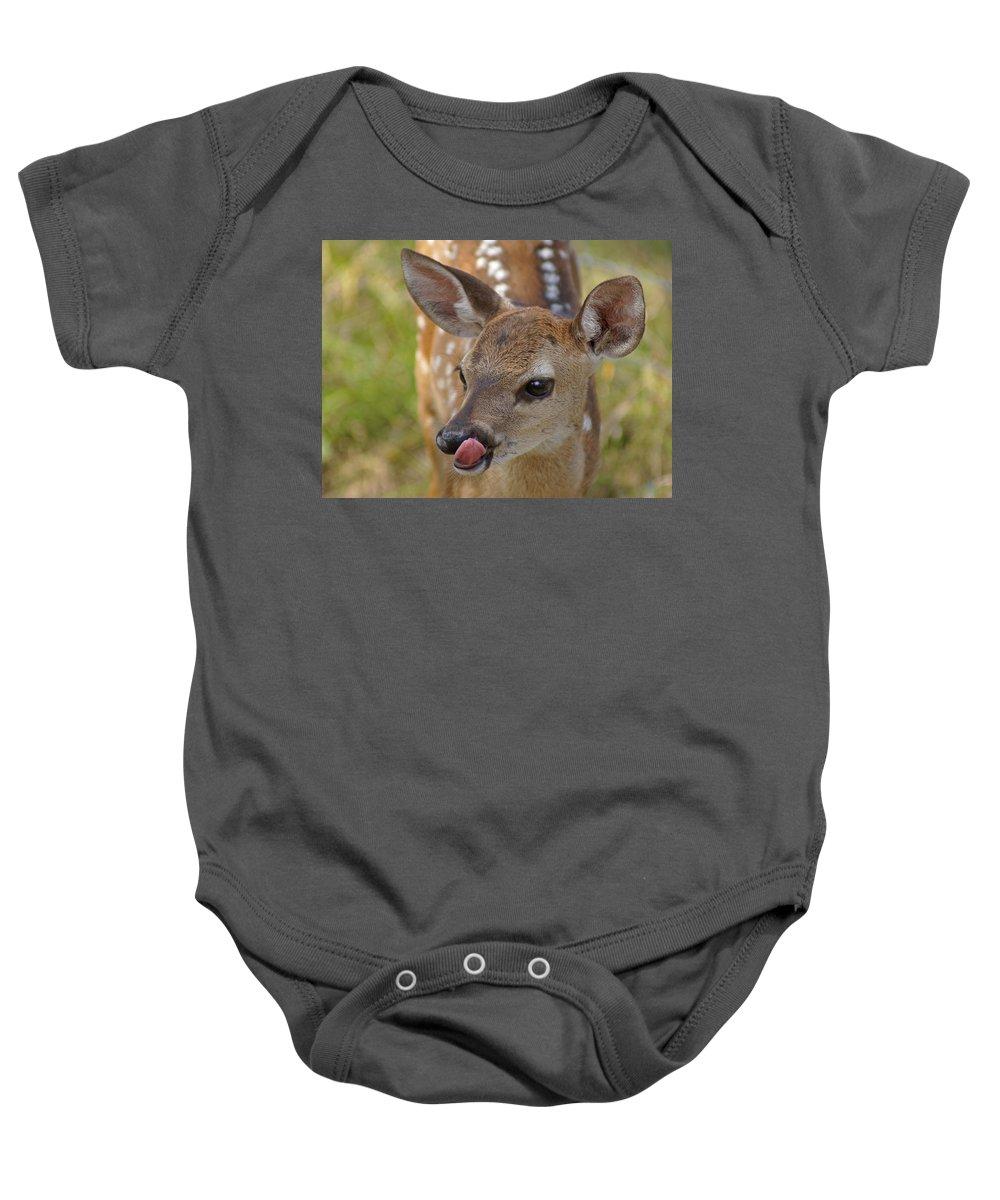 Deer Baby Onesie featuring the photograph Delicious Deer by Heather Coen
