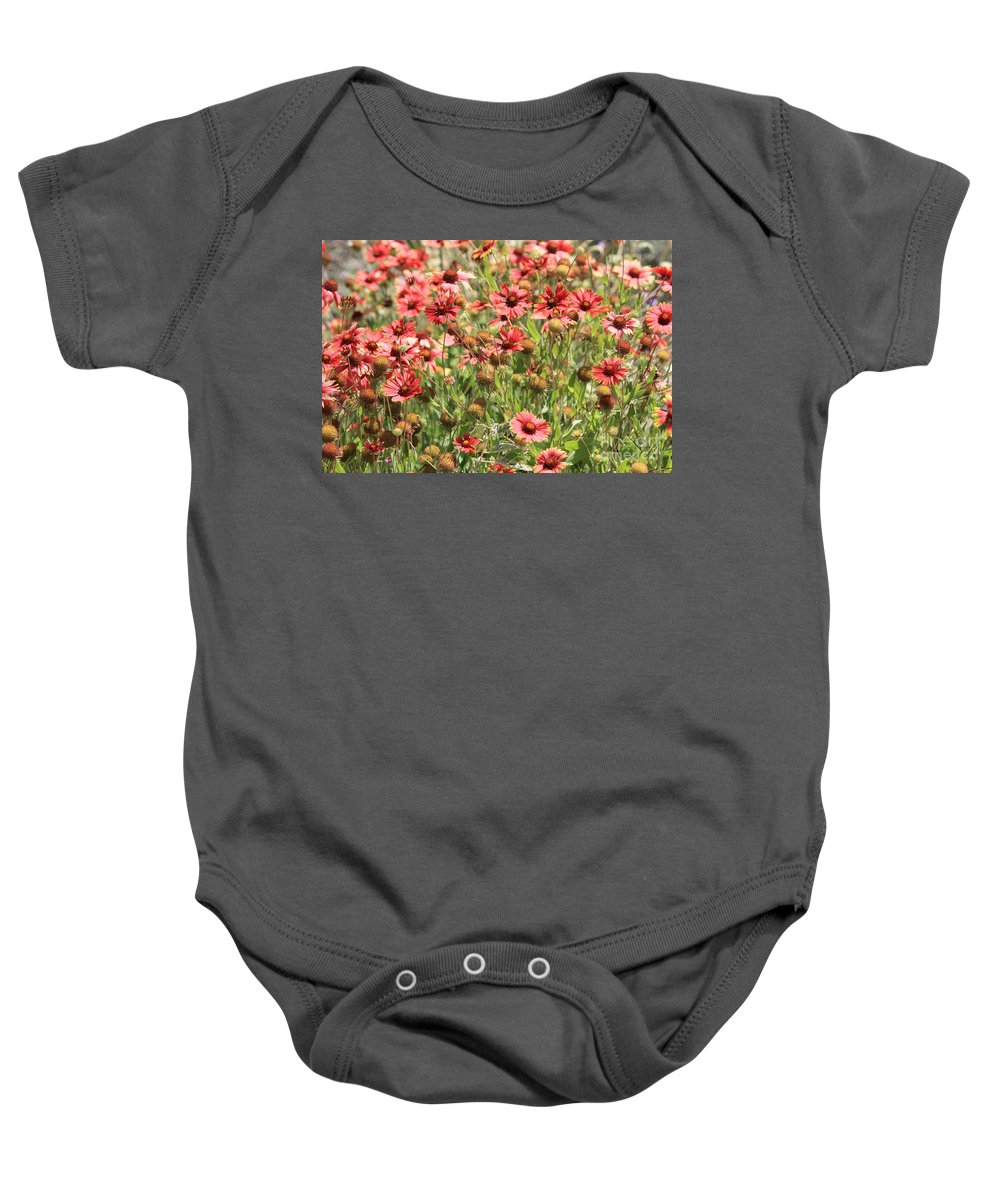 Flowers Baby Onesie featuring the photograph Desert Beauties by Carol Groenen