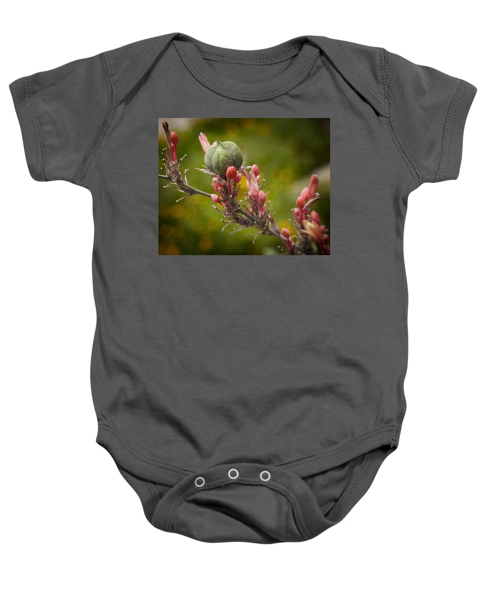 Seed Pods Baby Onesie featuring the photograph Desert Seed Pod 2 by Kelley King