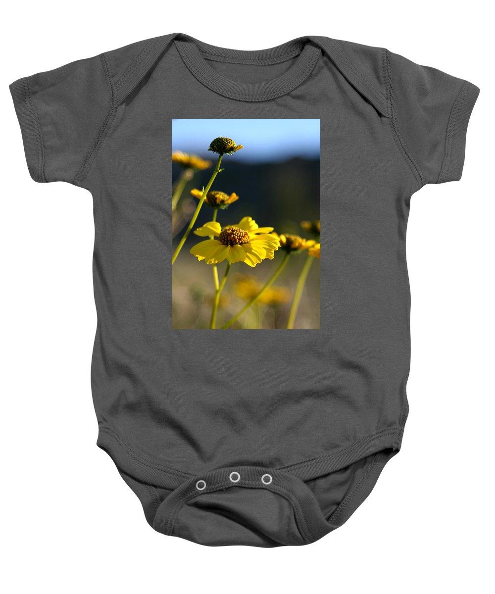 Desert Sunflower Baby Onesie featuring the photograph Desert Sunflower by Chris Brannen