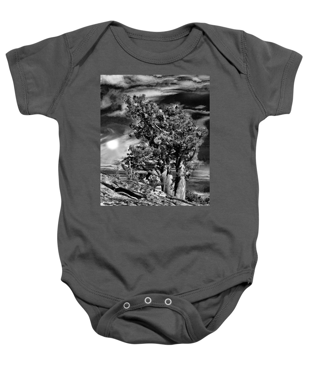 Baby Onesie featuring the photograph Deserted Tree by Blake Richards