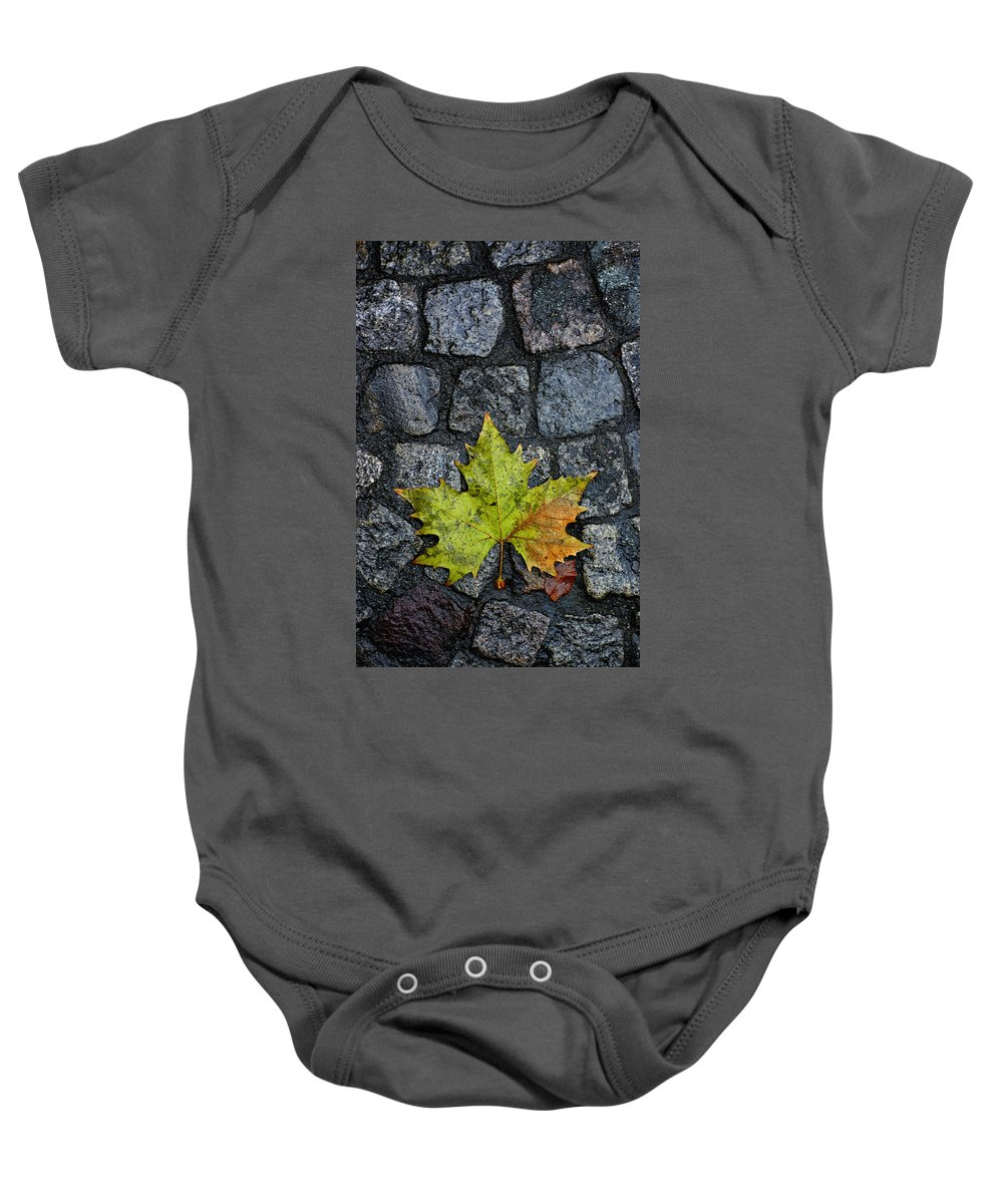 Nature Baby Onesie featuring the photograph Deville by Skip Hunt