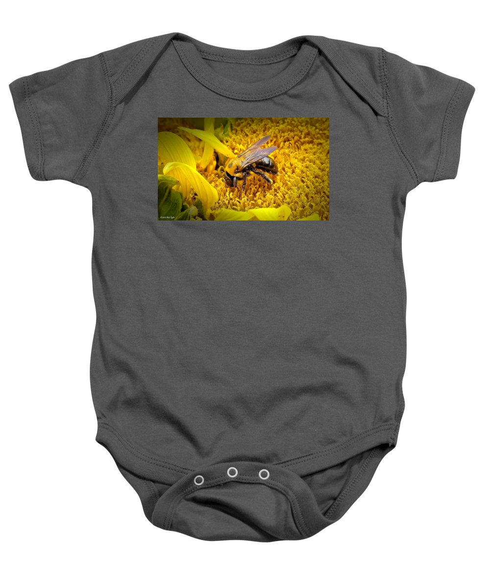 Nature Baby Onesie featuring the photograph Diligent Pollinating Work by Matt Taylor