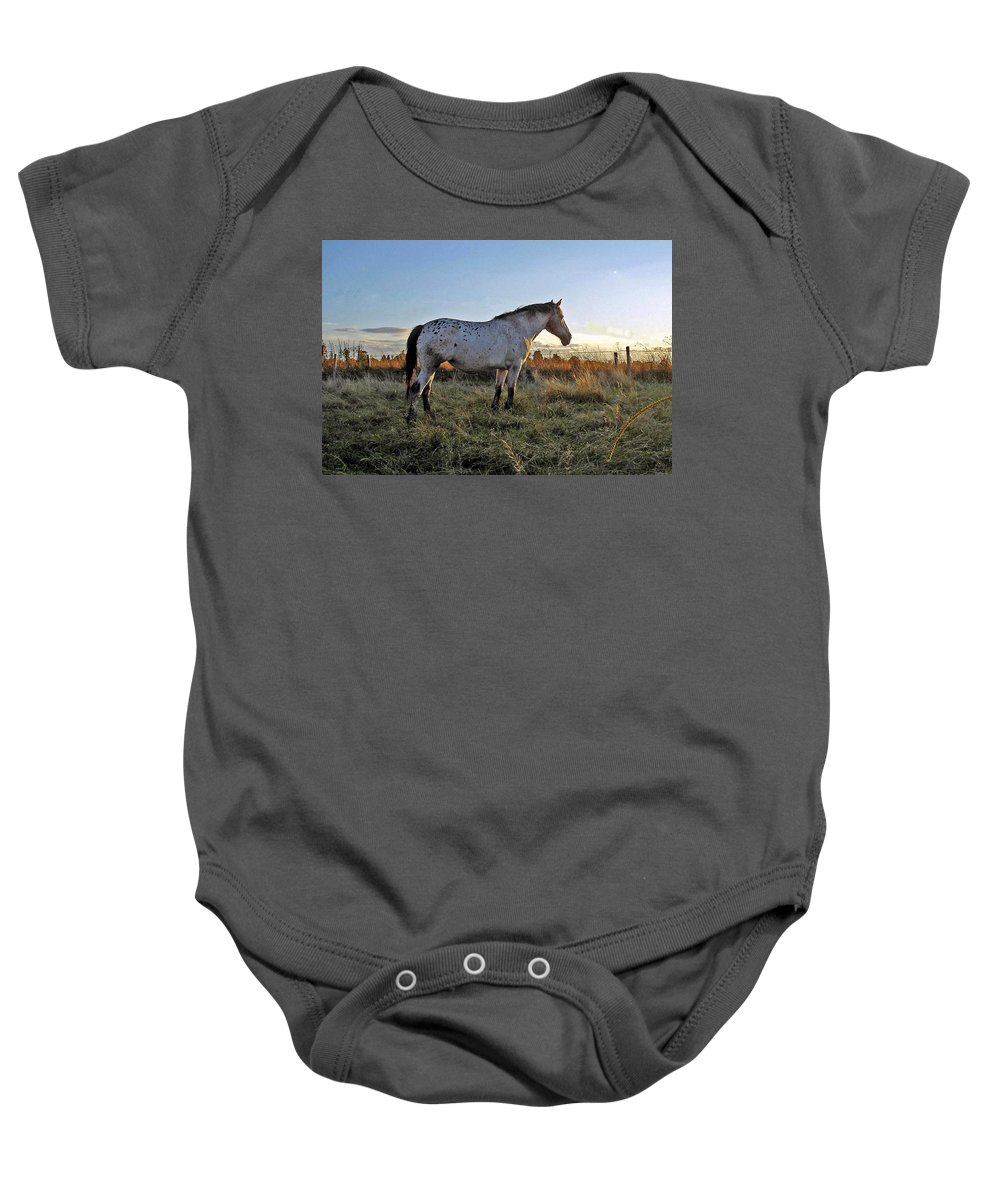Appaloosa Baby Onesie featuring the photograph Distant Thoughts by Susan Baker