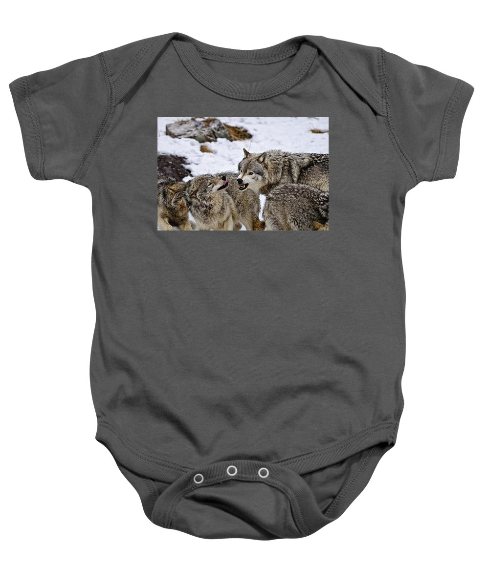 Michael Cummings Baby Onesie featuring the photograph Do I Have Your Attention Now by Michael Cummings