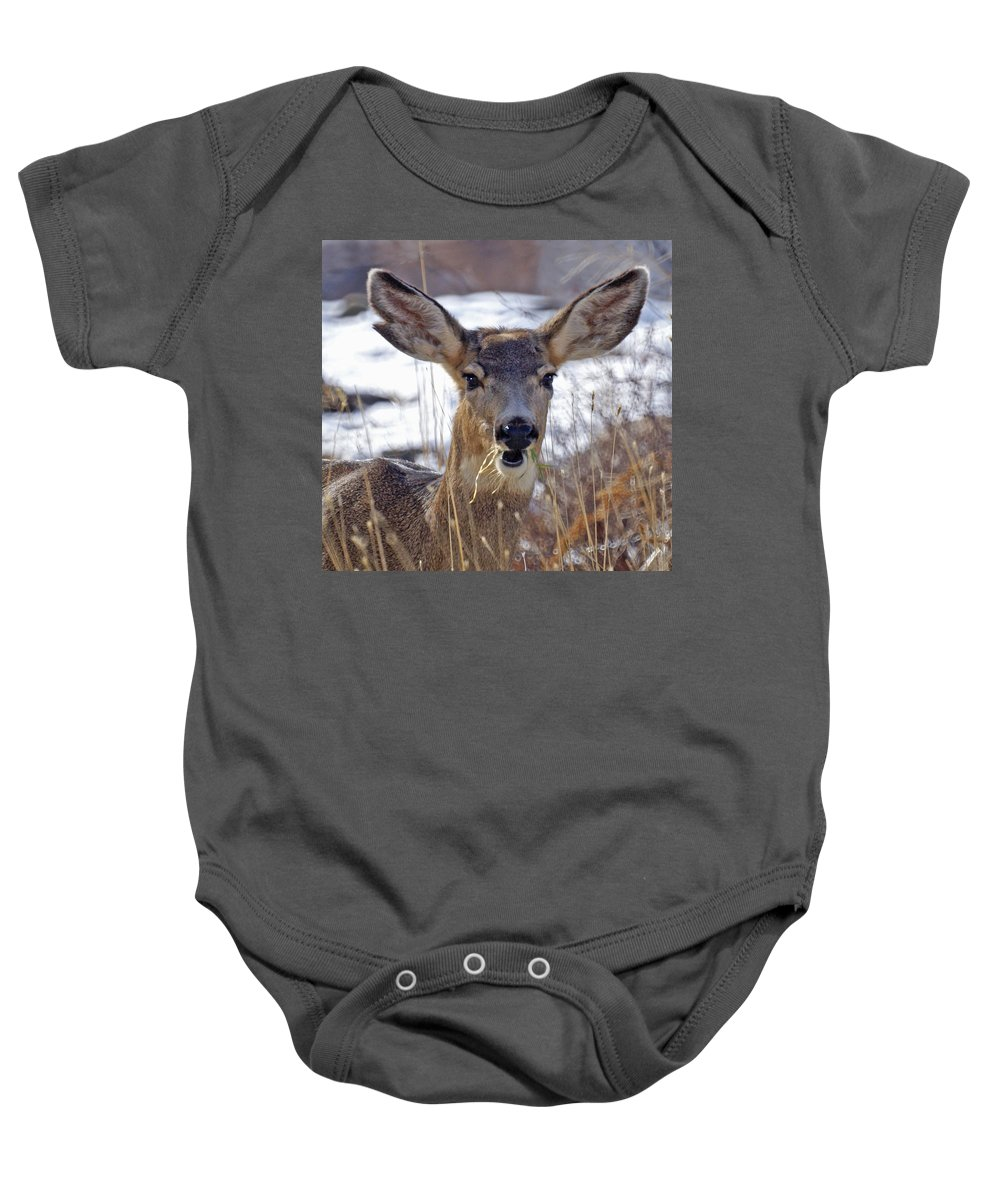 Doe Baby Onesie featuring the photograph Doe by Heather Coen