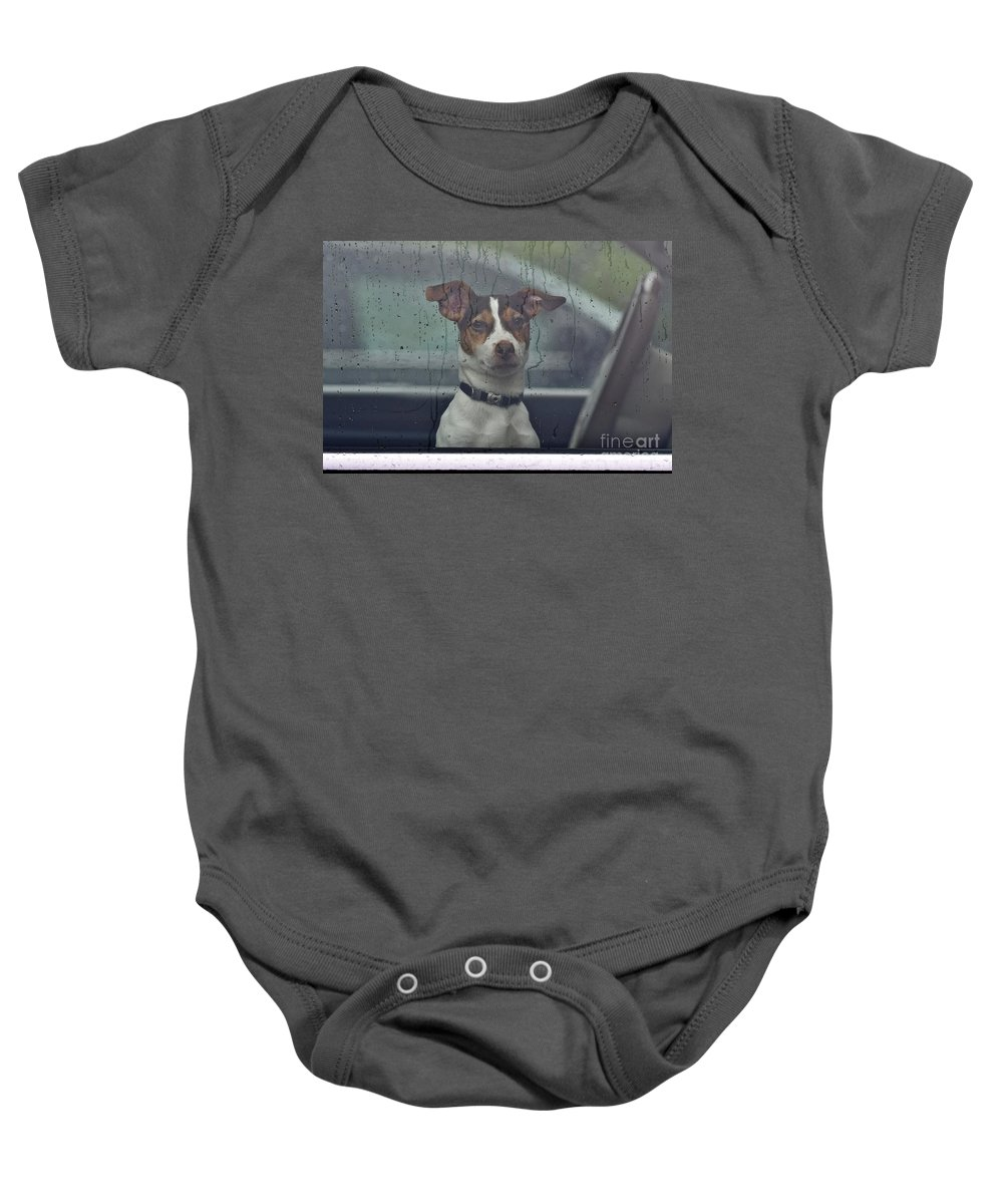 Animal Baby Onesie featuring the photograph Dog Looking Out Car Window by Jeramey Lende