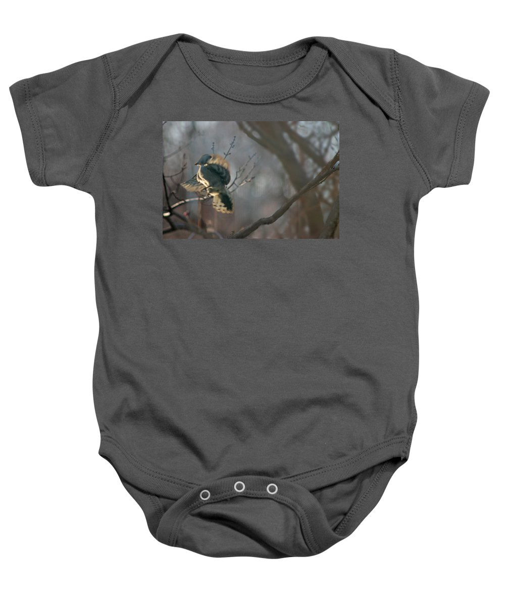 Nature Baby Onesie featuring the photograph Downey Woodpecker by Steve Karol
