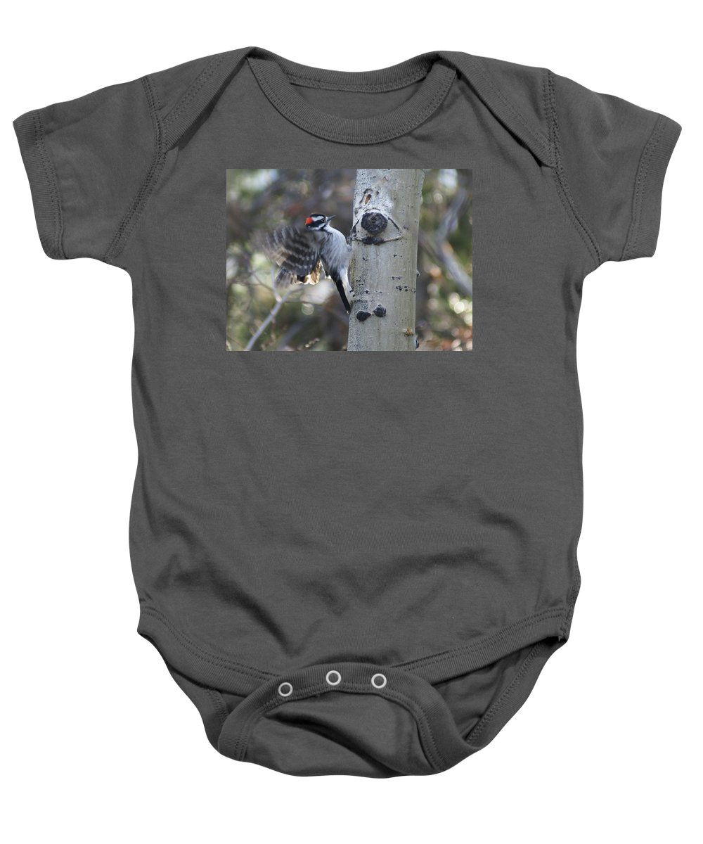 Woodpecker Baby Onesie featuring the photograph Downy Woodpecker by Heather Coen