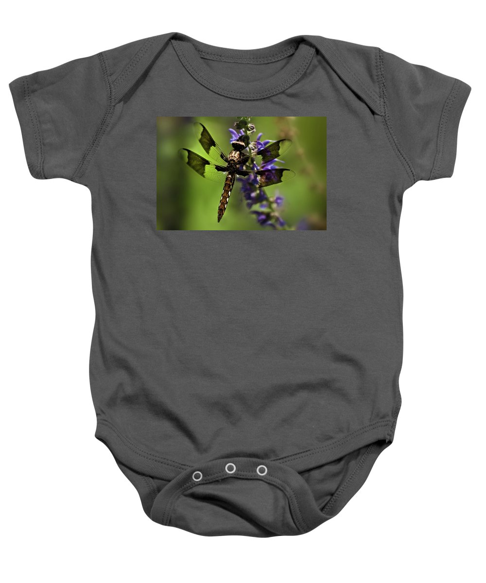 Dragon Fly Baby Onesie featuring the photograph Dragonfly On Salvia by Onyonet Photo Studios