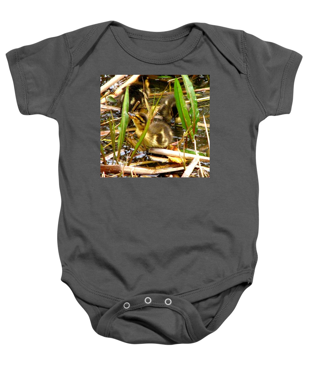 Duck Baby Onesie featuring the photograph Ducklings 1 by J M Farris Photography