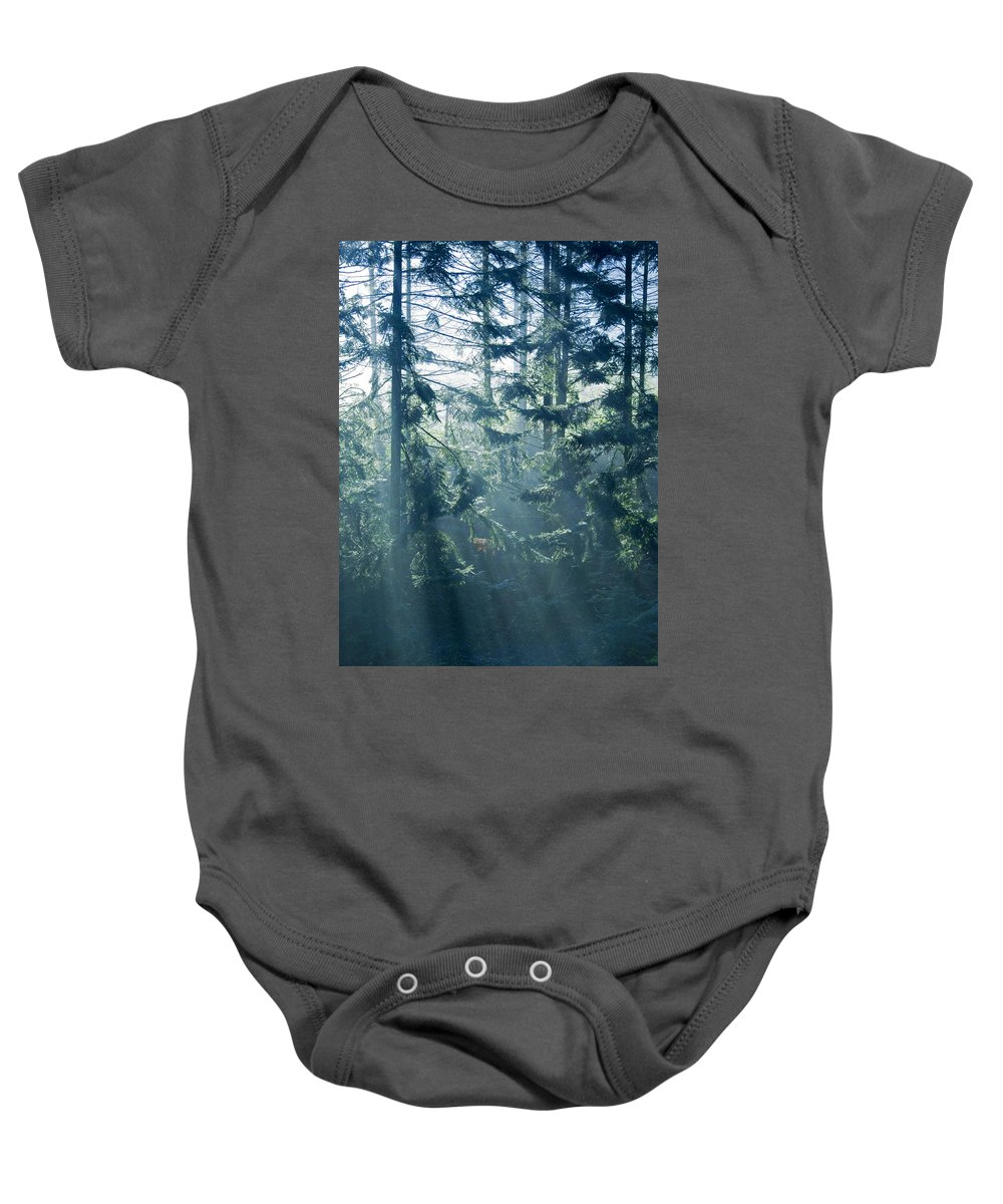 Magical Baby Onesie featuring the photograph Dusk In Ashenvale IIi by Daniel Csoka