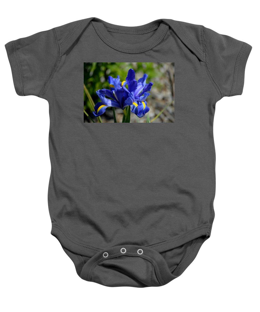 Flower Baby Onesie featuring the photograph Dutch Iris by Belinda Stucki