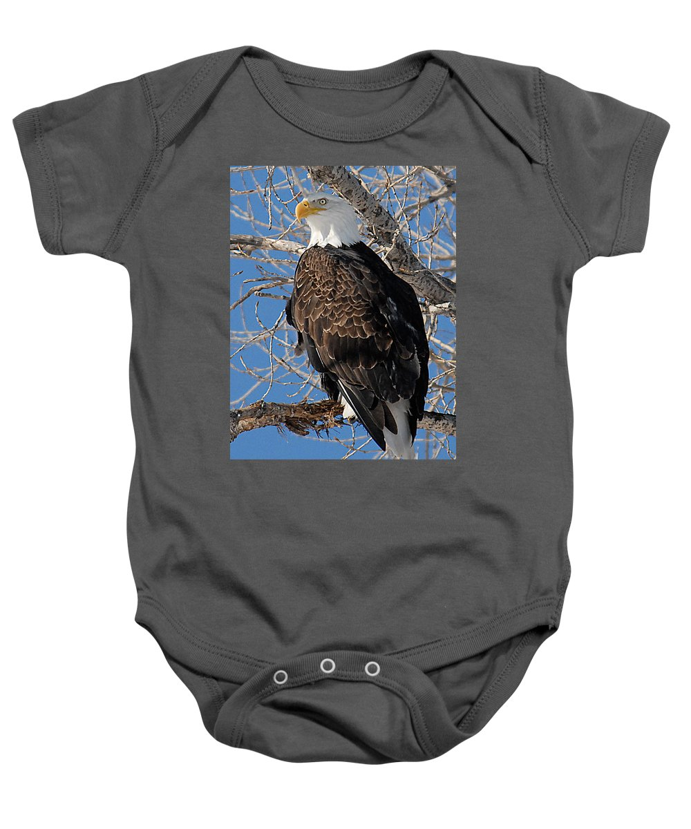 Raptor Baby Onesie featuring the photograph Eagle by Mike Scheufler