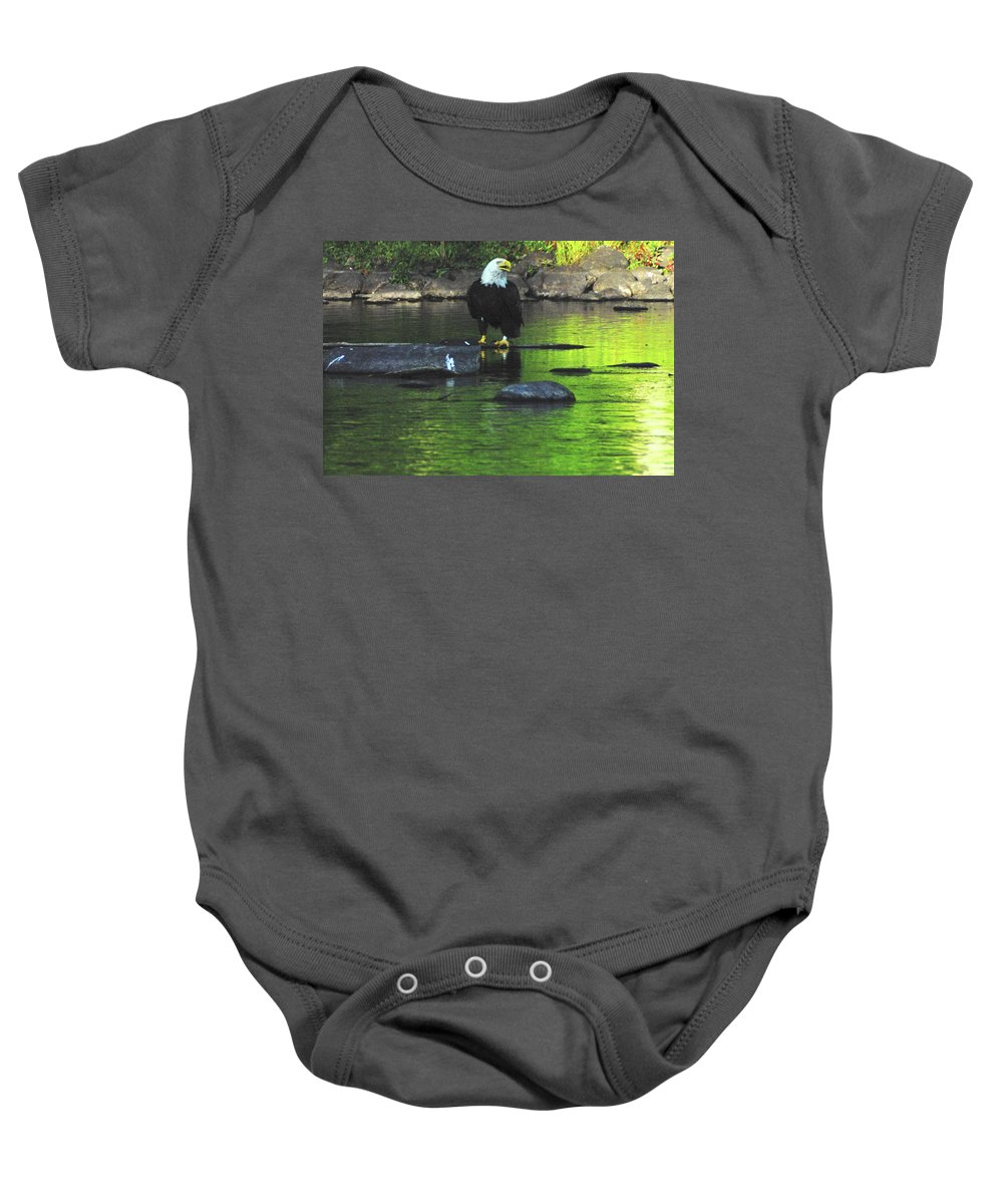 Eagle Baby Onesie featuring the photograph Eagle On River Rock IIi by Alice Markham