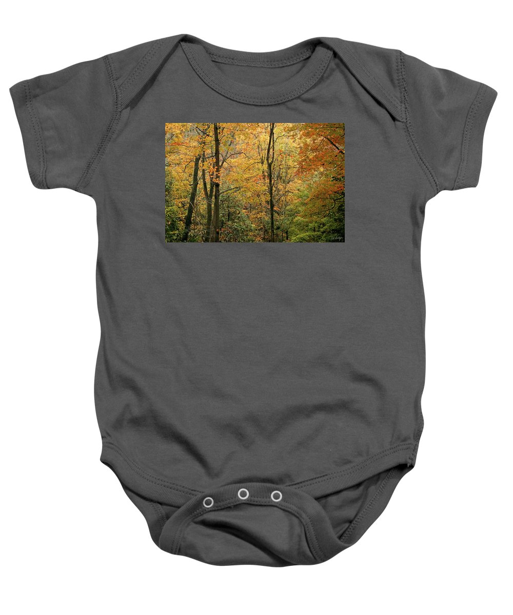 Tree Baby Onesie featuring the photograph Early Autumn by Phill Doherty