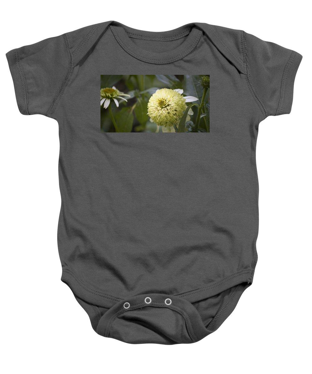 Photographs Baby Onesie featuring the photograph Echinacea Milkshake by Teresa Mucha
