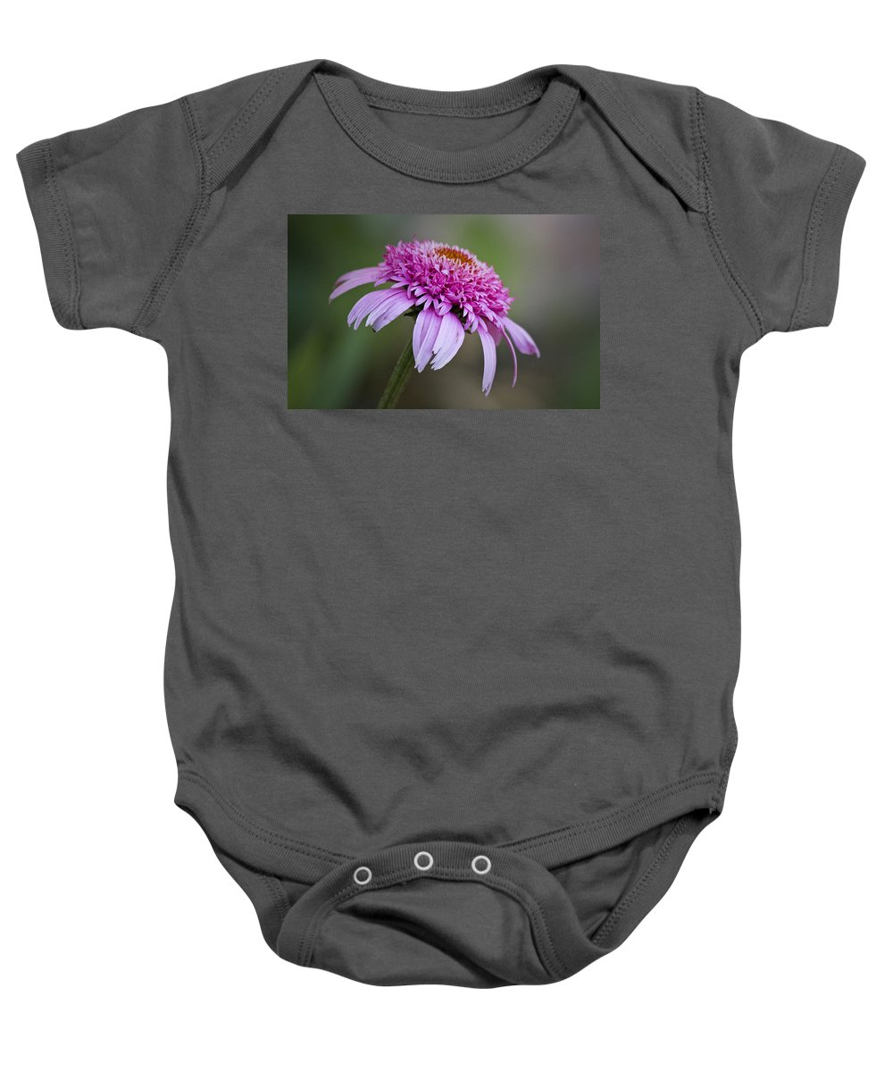 Pink Baby Onesie featuring the photograph Echinacea Pink Double Delight by Teresa Mucha