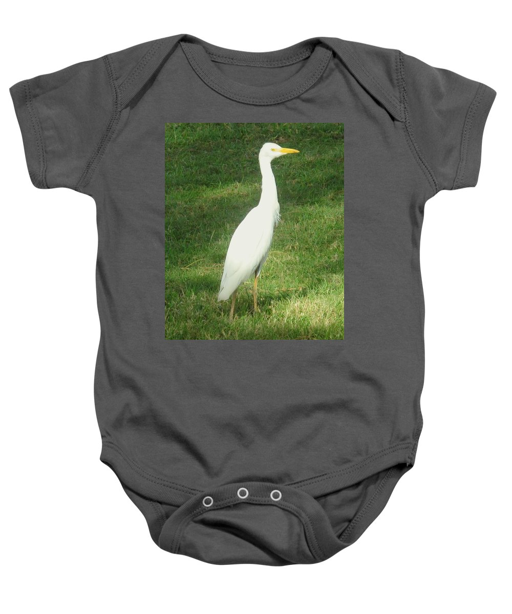Egret Baby Onesie featuring the photograph Egret Posing by Ian MacDonald