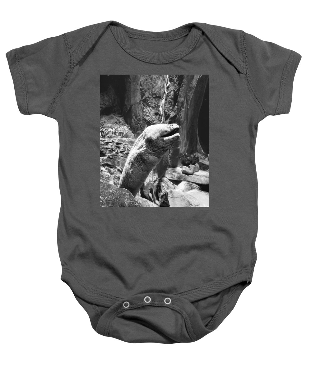 Electric Eel Baby Onesie featuring the photograph Electrifying by Stacey Marshall