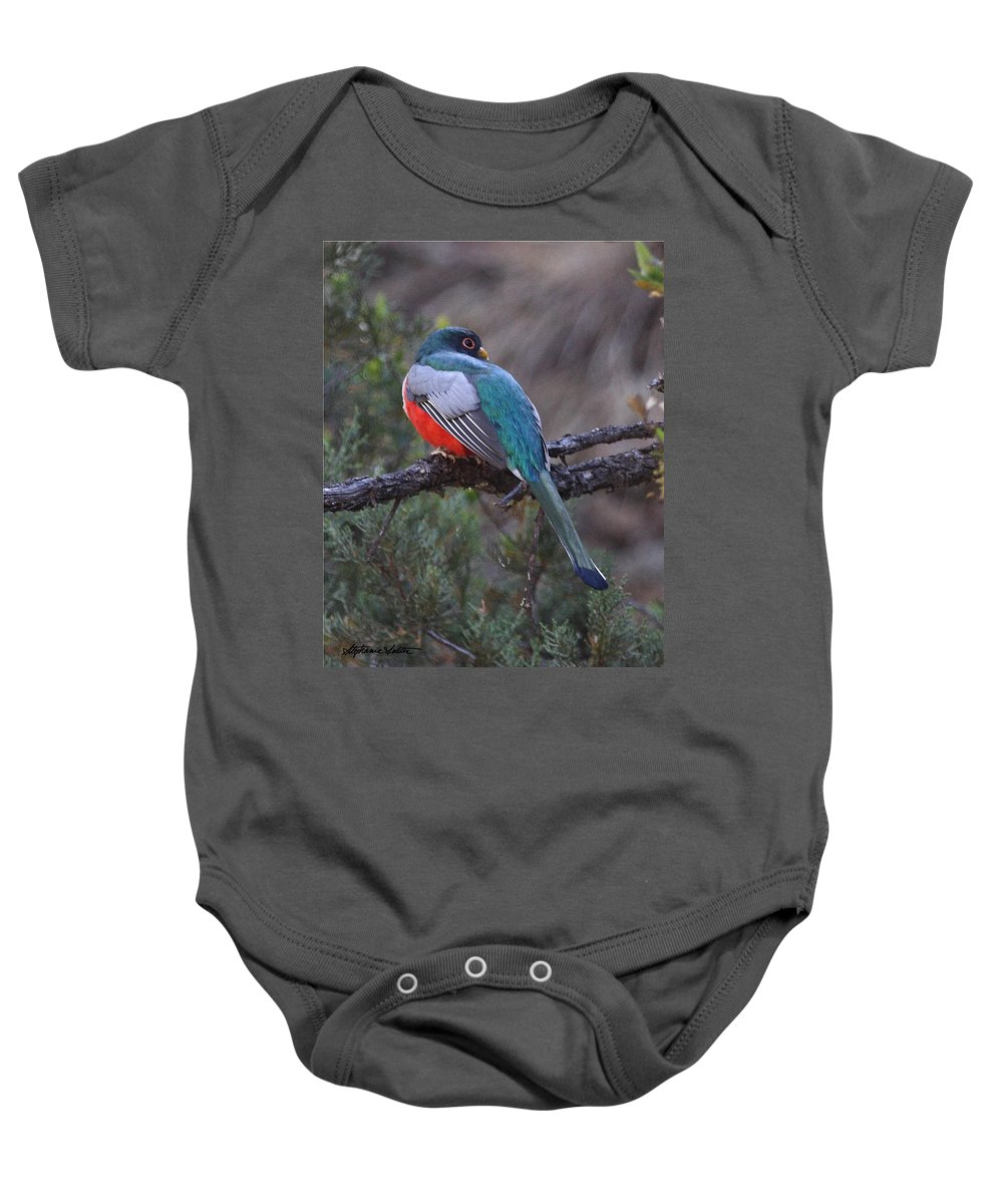 Nature Baby Onesie featuring the photograph Elegant Trogon by Stephanie Salter