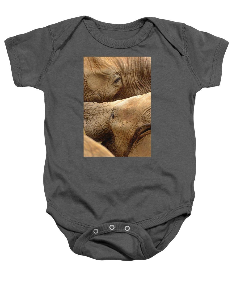 Elephants Baby Onesie featuring the photograph Elephants by Thomas Morris