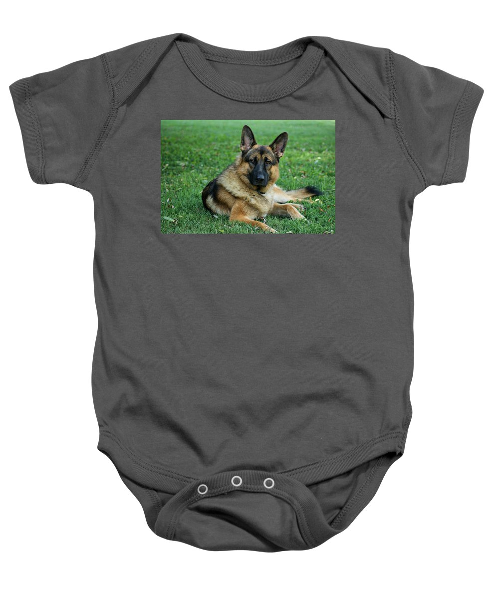 German Shepherd Baby Onesie featuring the photograph Enjoying The Day by Sandy Keeton