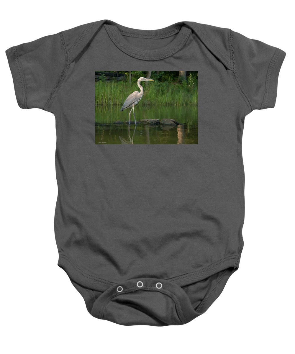 Water.heron Baby Onesie featuring the photograph Evening Stroll by Glenn Thompson