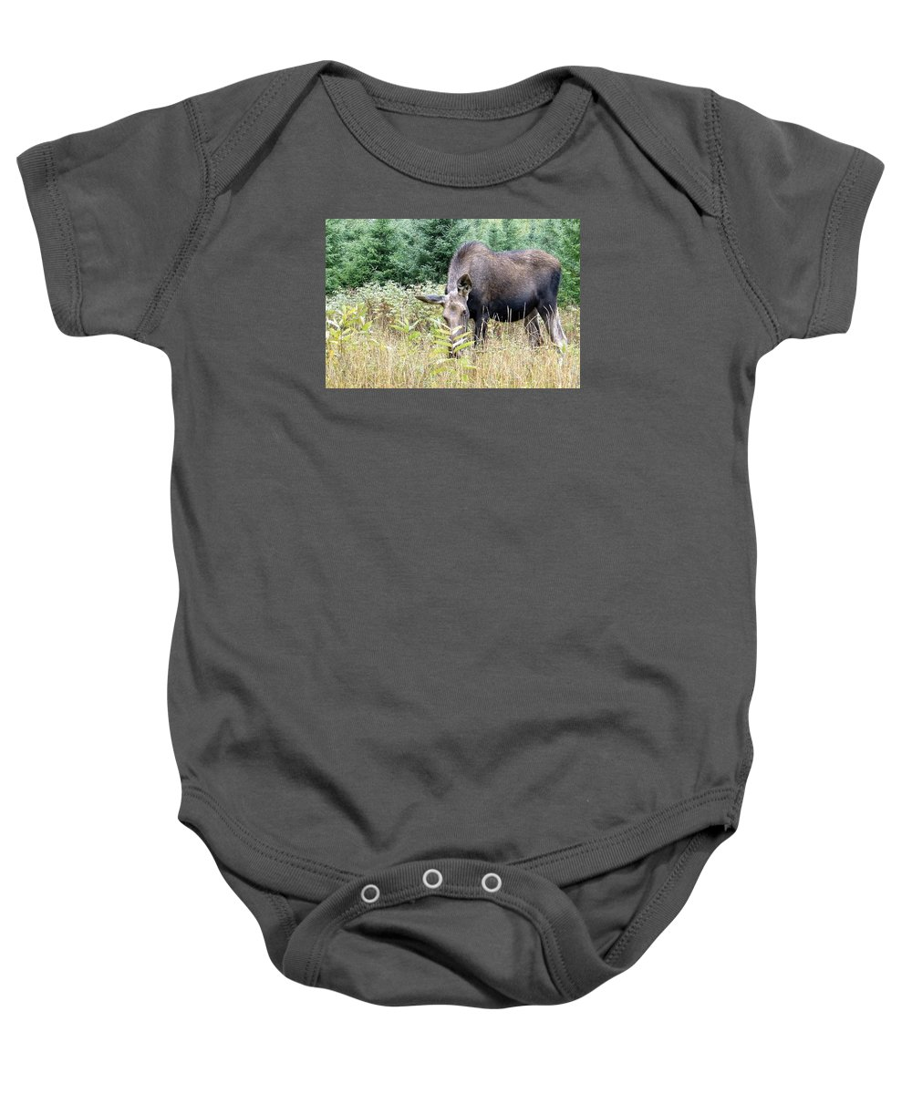 Moose Baby Onesie featuring the photograph Eye-contact With The Moose by Asbed Iskedjian