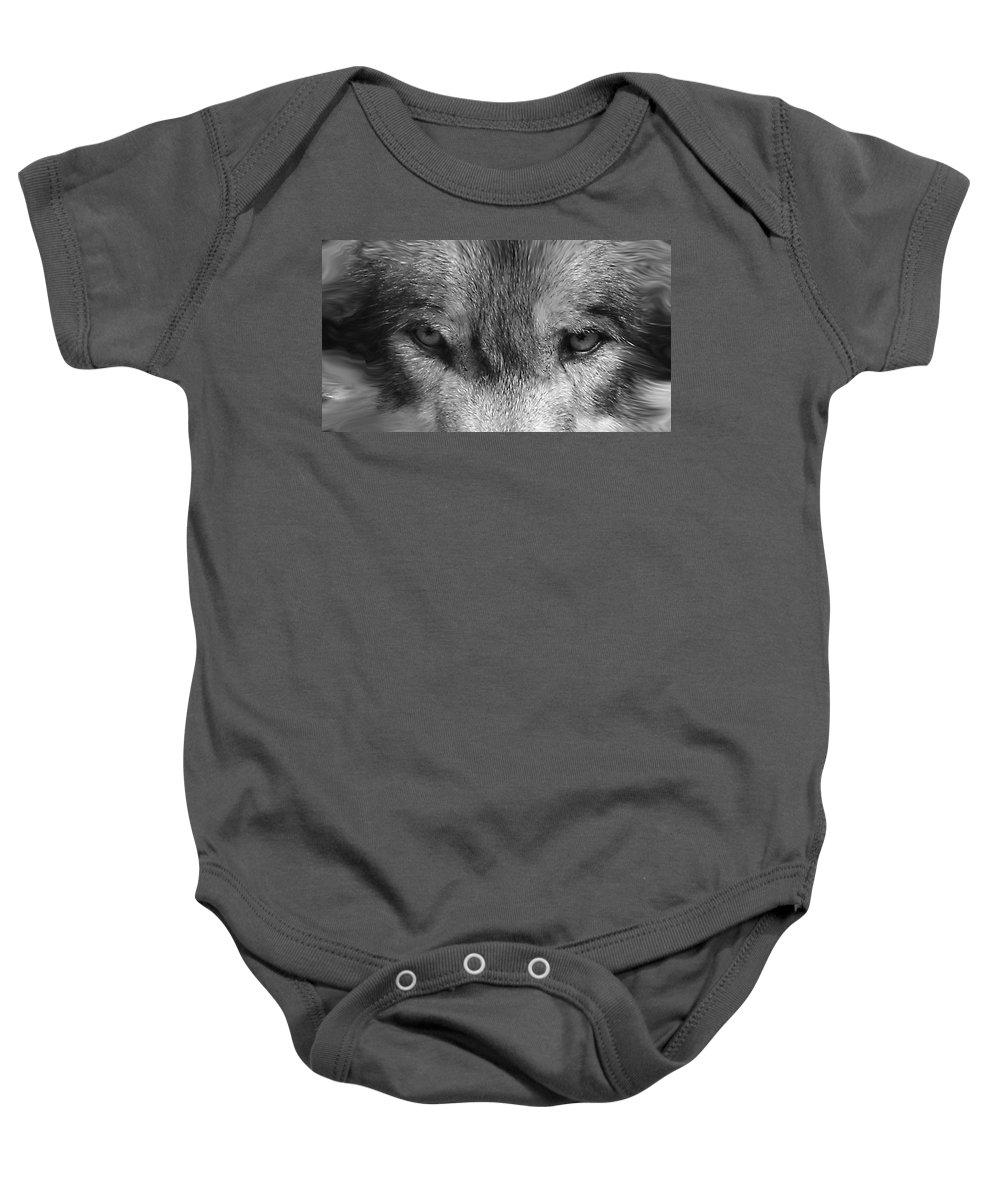Wolf Canid Canus Lupis Wildlife Grey Gray Timberwolf Animal Mammal Photograph Photograhy Eyes Black White Desaturate Baby Onesie featuring the photograph Eyes Of The Wild by Shari Jardina