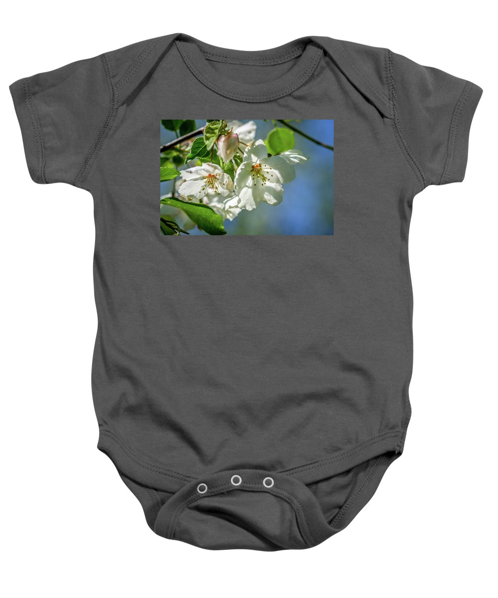 Cherry Blossoms Baby Onesie featuring the photograph Fading Beauties by Martina Schneeberg-Chrisien