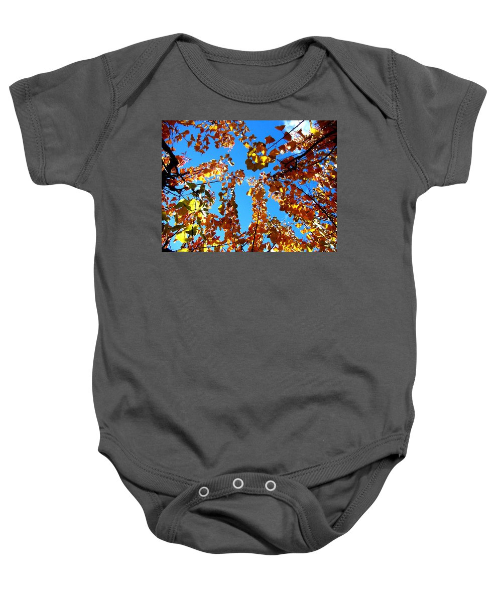 Apricot Leaves Baby Onesie featuring the photograph Fall Apricot Leaves by Will Borden