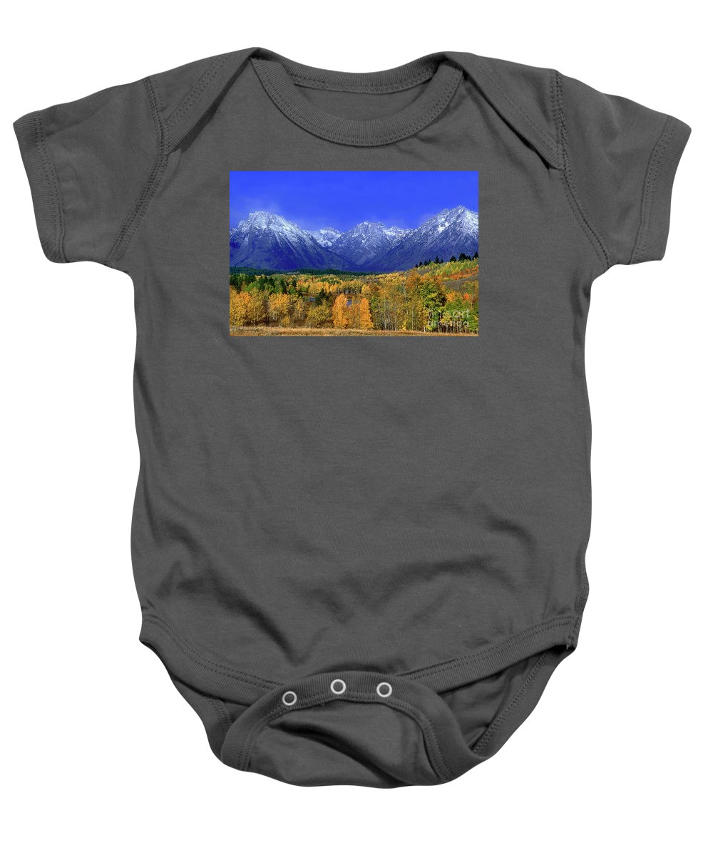 Grand Tetons National Park Baby Onesie featuring the photograph Fall Colored Aspens Grand Tetons Np by Dave Welling