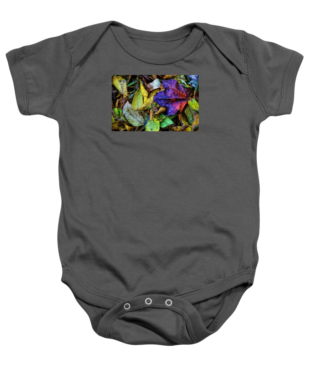 Leaves Baby Onesie featuring the photograph Fall Colors by Rich Fiddelke